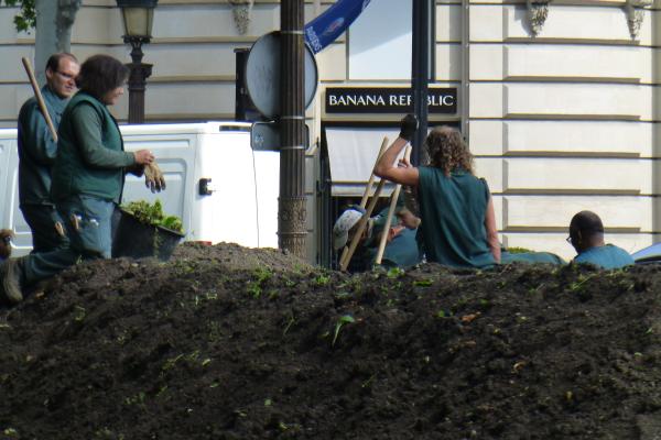 Arbeiten Sie gerne im Freien? Dann werden Sie doch Gärtner in der Banana Republic!