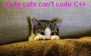 picture_cats_cant_code_c_pexels-photo-96938-large