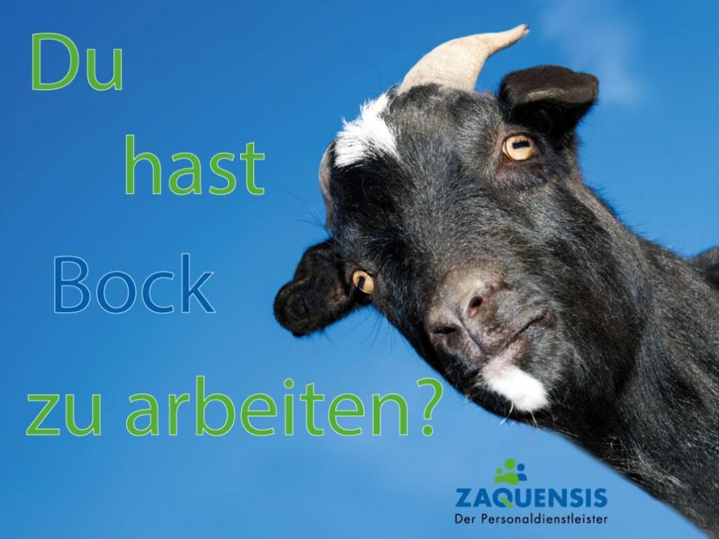 picture_Zaquensis_Hast-Du-Bock