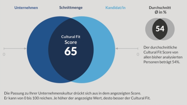 chart_cultural_fit_cfe_reportauszug_schnittmenge_pm
