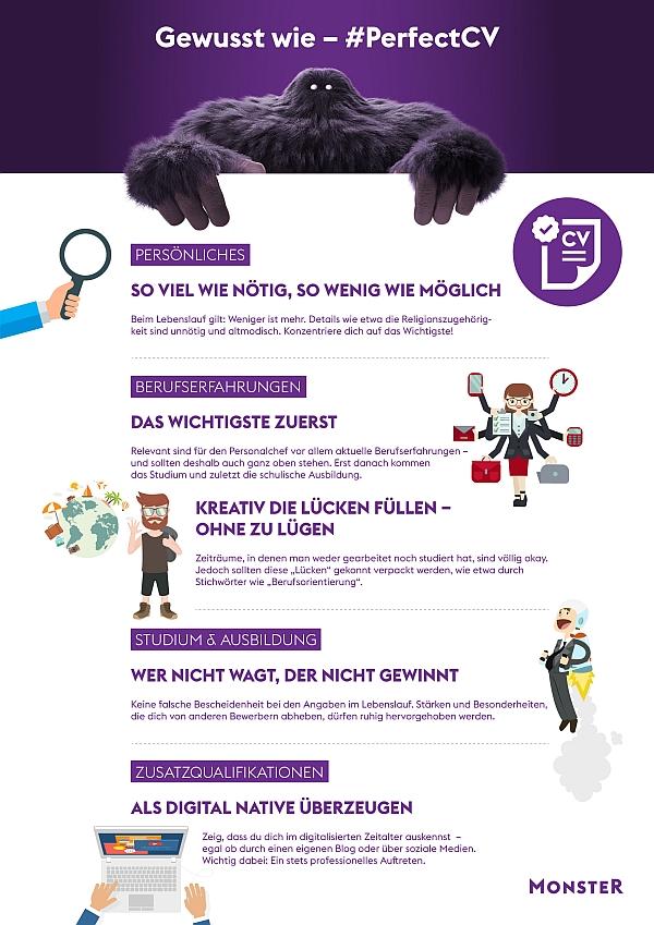 chart_Monster_PerfectCV_Infografik_2017